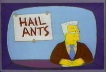 kent-brockman---insect-overlords-66140